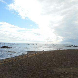 海浜まつり